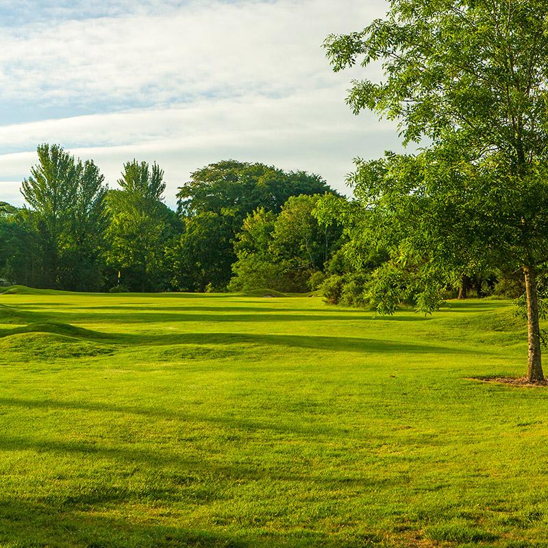 Cork<br /> Golf Club