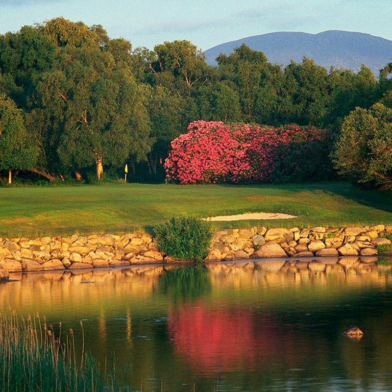 Killarney<br /> - The Killeen Course